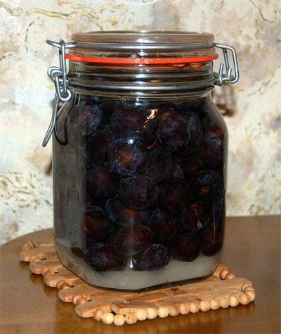Sloe gin, ready for maceration in a jar