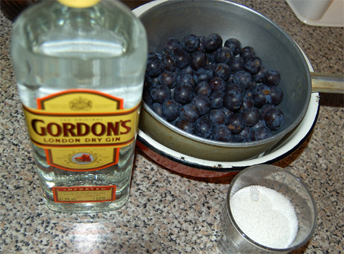 Sloe gin, ingredients