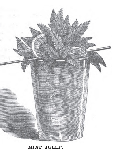 Mint Julep by Jerry Thomas